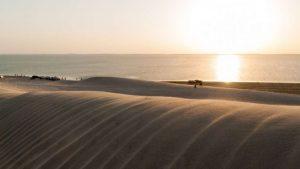 Reserva Natural Khor Al Adaid - Belezas do Qatar
